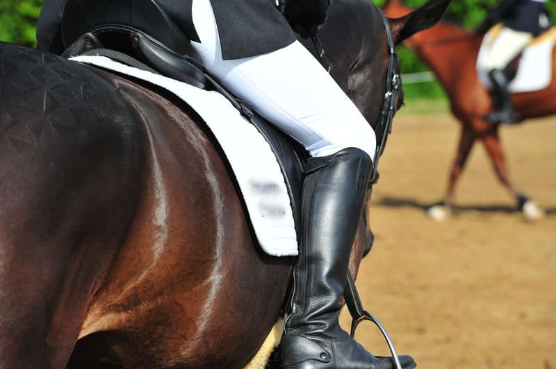 La sella migliore per il tuo cavallo